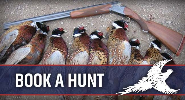 Book A Hunt with Pheasant City Lodge