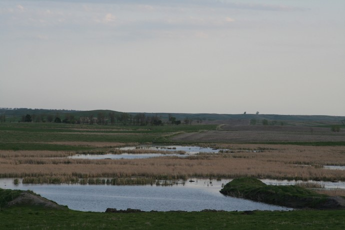 Waterfowl Habitat Photo
